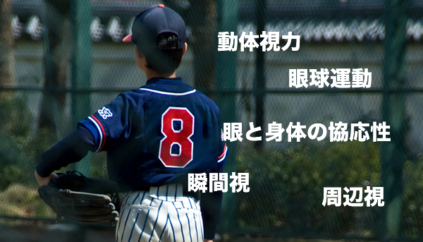 スポーツと眼の関係